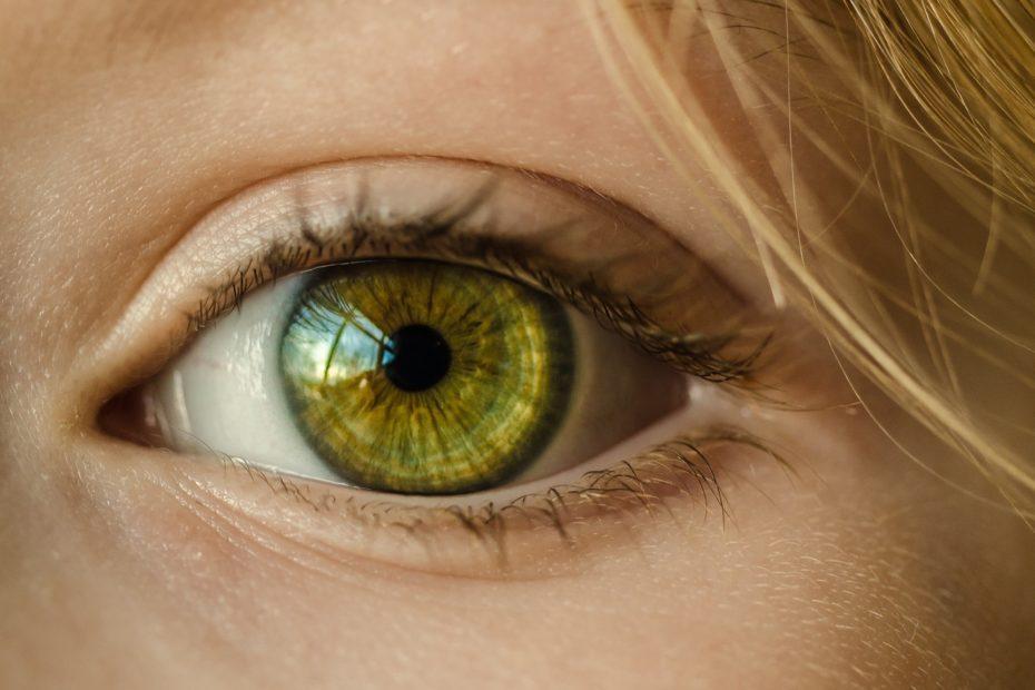 eye nervous system